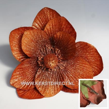 Fleur Noel Magnolia Cognac  Per omdoos