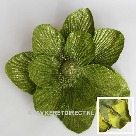 48 stuks per omdoos  Kerstbloem Magnolia Glitter -  Lime  Per omdoos