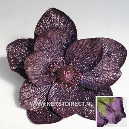 Kunst Blume Magnolia Violet  Per omdoos