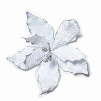 Fleur Noel Pontsettia Argent Per omdoos